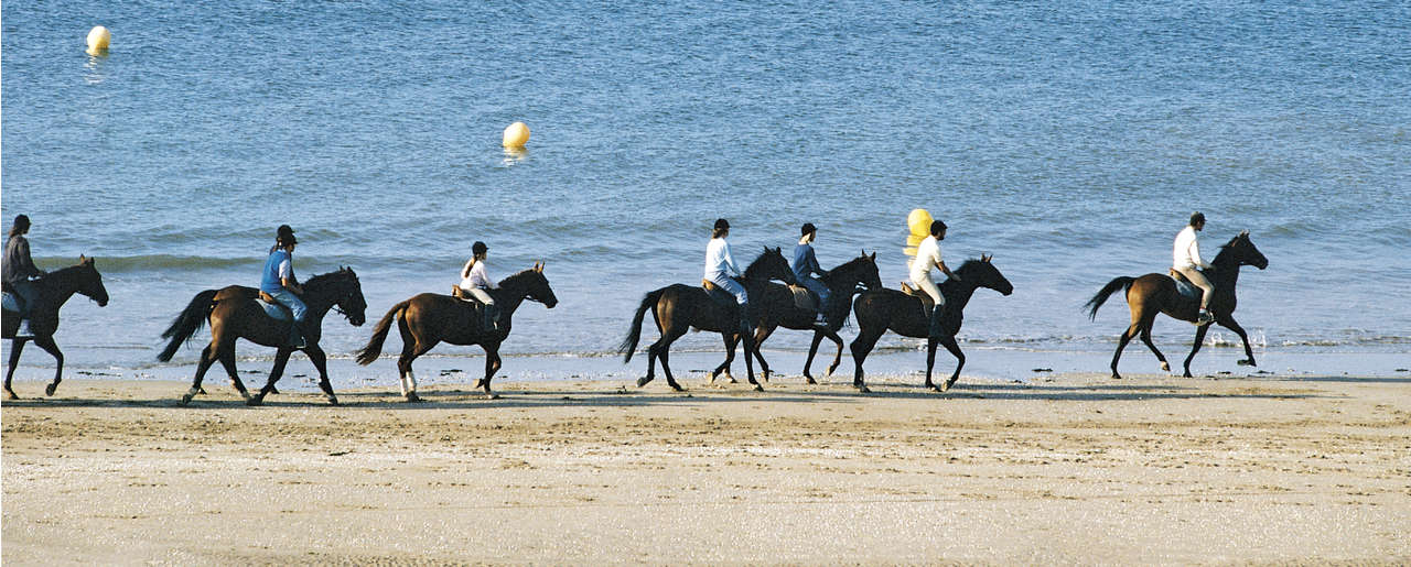 Hotel Castel Marie Louise - Horse ride on the beach